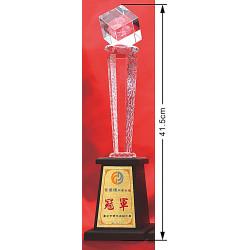 水晶獎盃CRY-C31Y