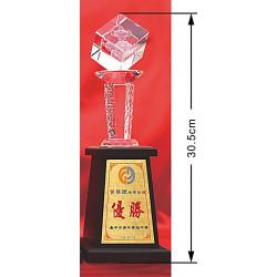 水晶獎盃CRY-C35Y