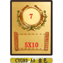 CYG93